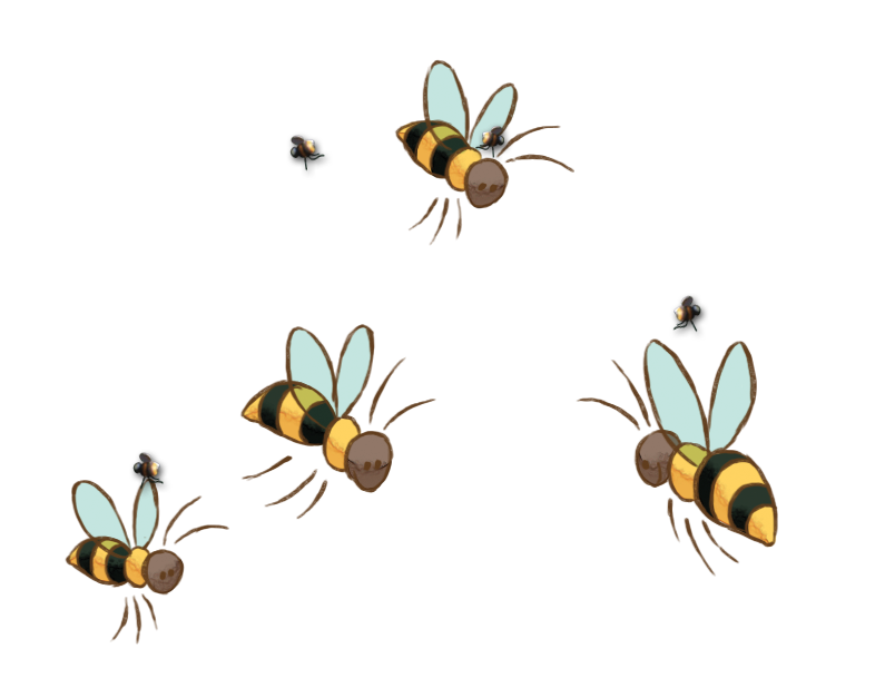 abeilles melliferes Ruches parrainage lille hauts-de-france